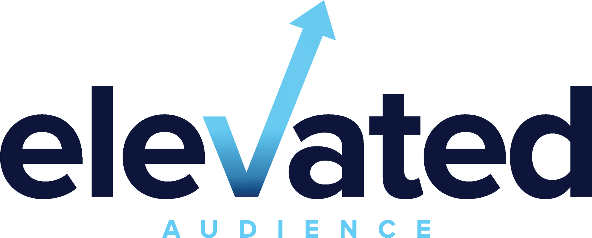 ELEVATED AUDIENCE - Navy
